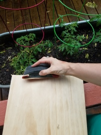 Sanding (hello, little tomato plants!)